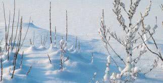 Sonhar com inverno