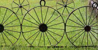 Sonhar com roda