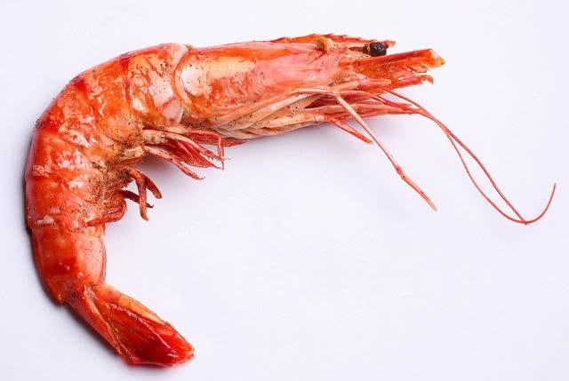Sonhar com camarão